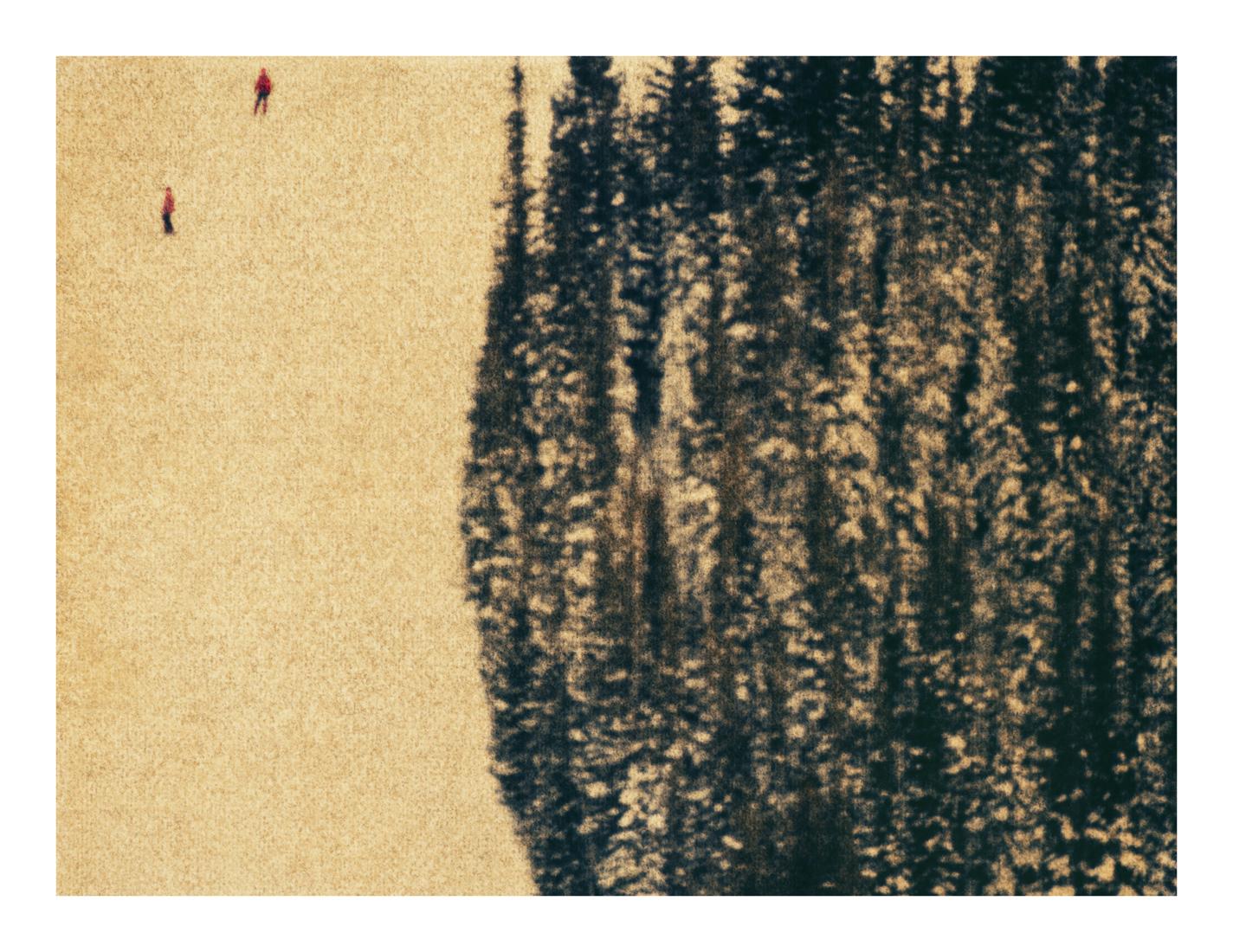Aspen #14, 2013 (1996)
