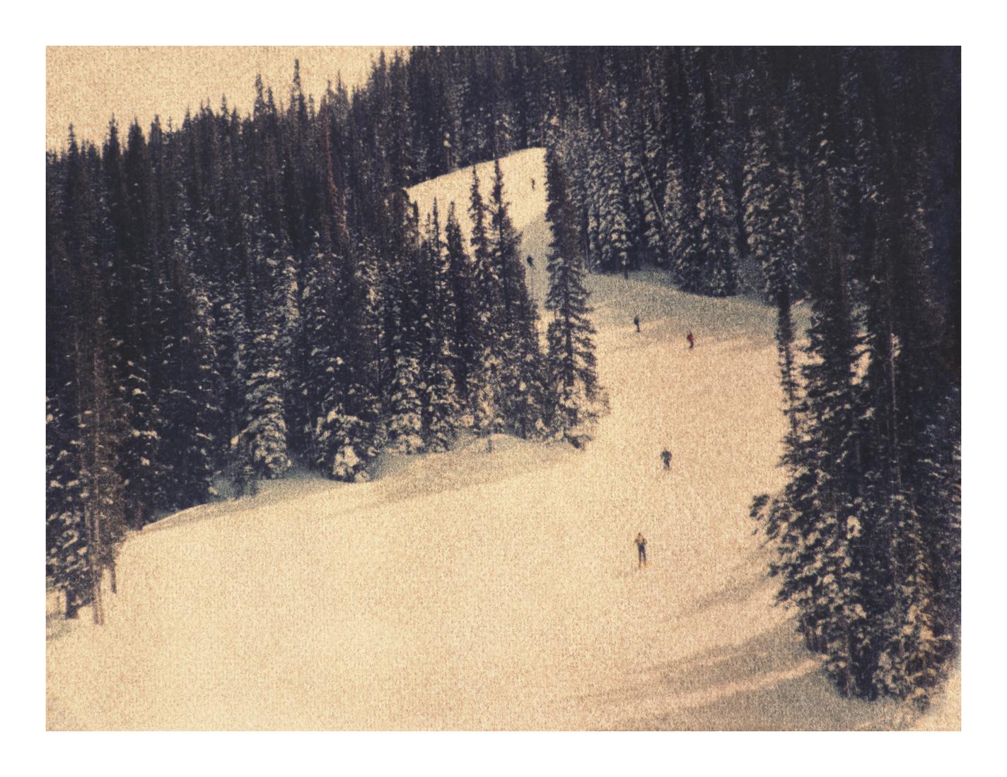 Aspen #19, 2013 (1996)