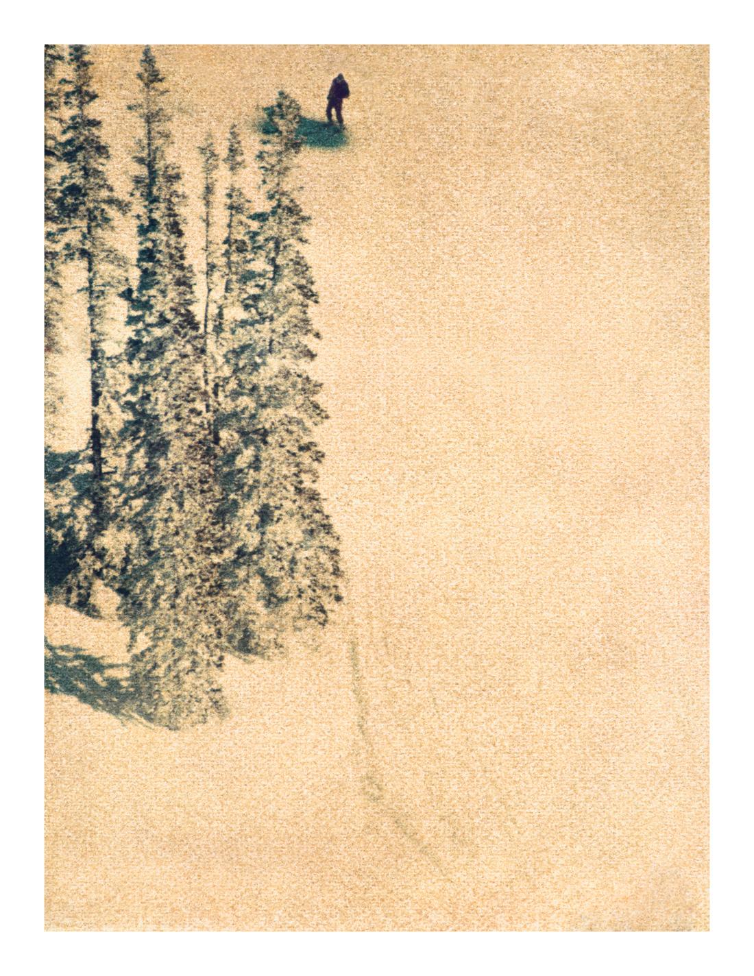 Aspen #7, 2007 (1996)