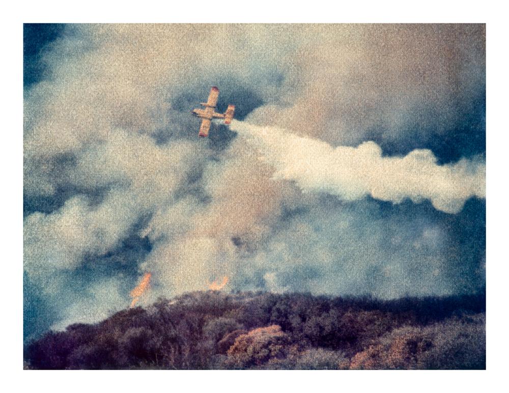 Brush Fire #2, Malibu 2007 (1996)