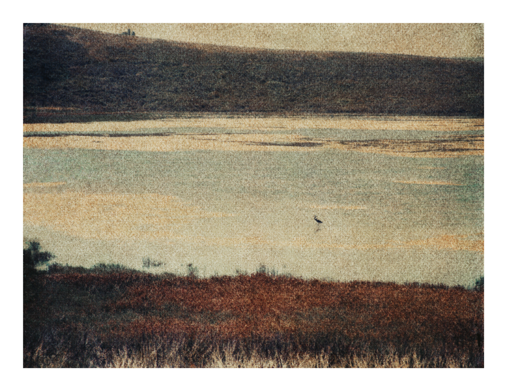 Estuary, California, 2014 (1997)