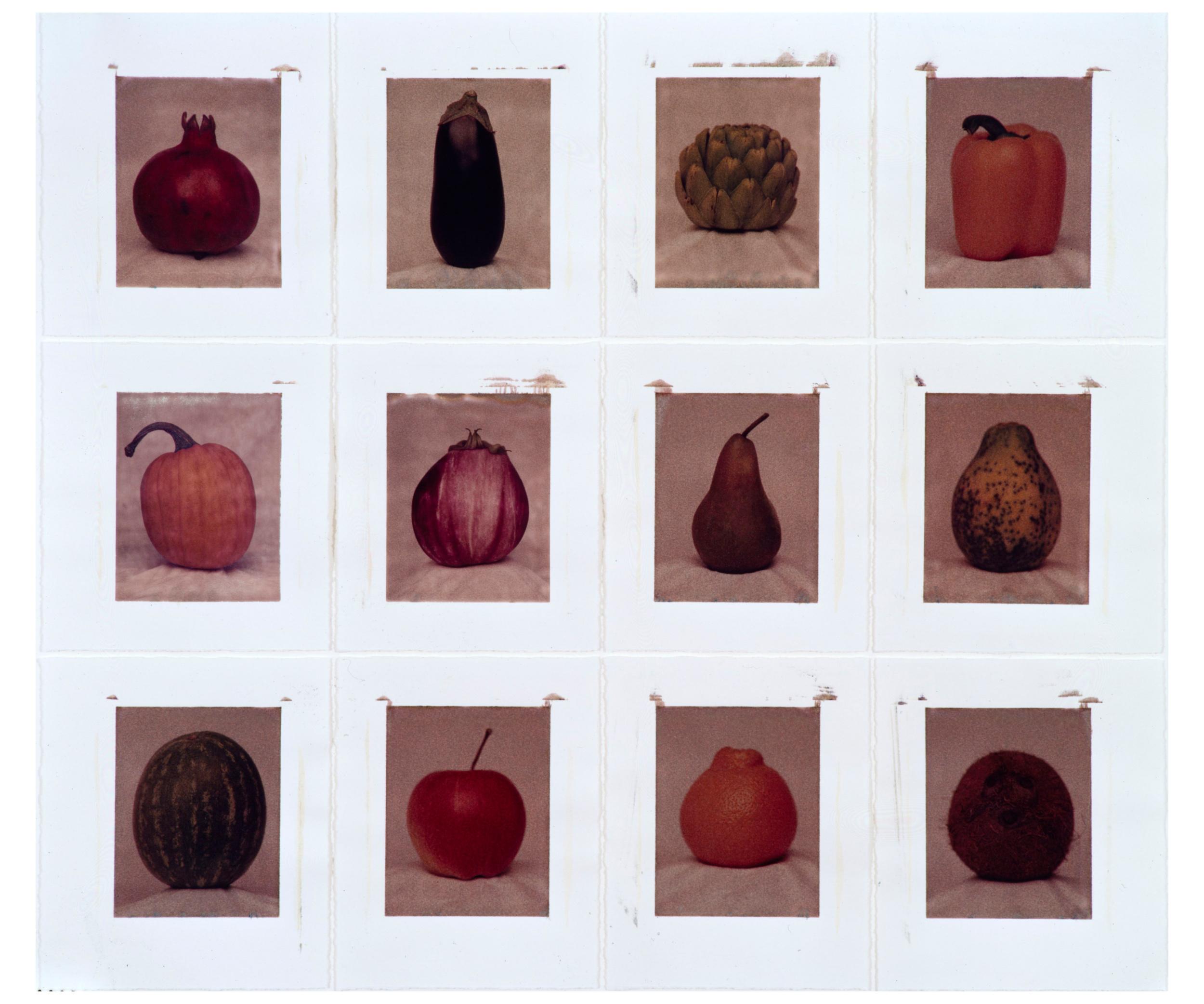 Harvest #2, 1997-2000