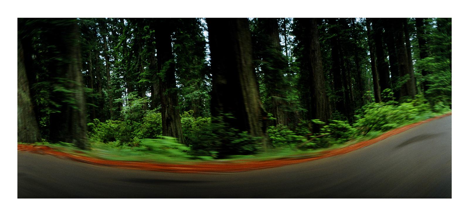 Roadscape #178, California, 1992